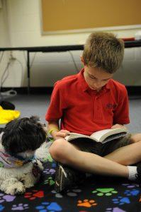 Charlie2 - kid reading